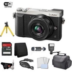 Panasonic Lumix 4k Mirrorless Micro Four Thirds Digital Camera with 12-32mm Lens (Silver) Bundle with 64GB Memory Card + Carrying Case + More