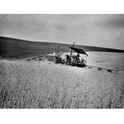 Posterazzi SAL2554622 Combine in a Wheat Field Washington USA Poster Print - 18 x 24 in.