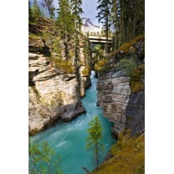 Posterazzi PDDCN01LDI0008 Athabasca Falls Jasper National Park Alberta Canada Poster Print by Larry Ditto - 18 x 26 in.