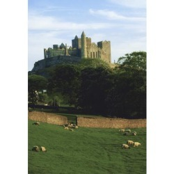 Posterazzi DPI1808907LARGE Rock of Cashel Co Tipperary Ireland - Medieval Irish Castle Poster Print by The Irish Image Collection, 24 x 36 - Large