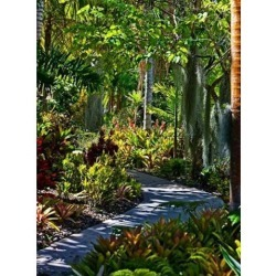 Posterazzi PDDCA32JRE0001 Nature Trail in Charlestown on Nevis West Indies Poster Print by Joe Restuccia III - 18 x 25 in. found on Bargain Bro India from Newegg Canada for $51.80
