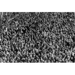 Posterazzi SAL2558436 High Angle View of a Crowd Poster Print - 18 x 24 in.