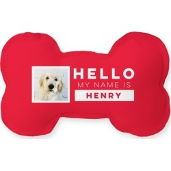 Dog Toys: Best In Show My Name Is Dog Toy