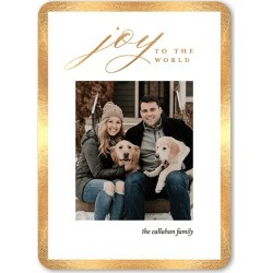 Christmas Cards: Yuletide Frame Holiday Card, Rounded Corners, Yellow, 5x7 Flat Card found on Bargain Bro from shutterfly.com for USD $2.38