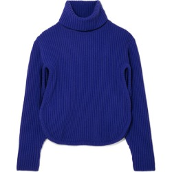 Antonio Berardi - Cutout Ribbed Wool And Cashmere-blend Turtleneck Sweater - Blue found on MODAPINS from NET-A-PORTER UK for USD $369.32