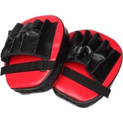 Thai Boxing Punch Focus Gloves Pair