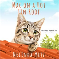 Mac on a Hot Tin Roof - Download