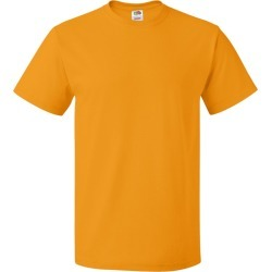 Fruit of the Loom - HD Cotton Short Sleeve T-Shirt - 3930R - Safety Orange - Medium found on Bargain Bro from clothing shop online for USD $1.78