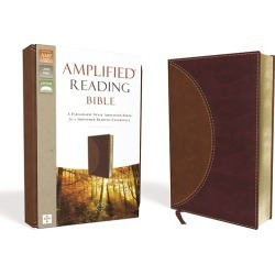 Amplified Reading Bible, Imitation Leather, Brown - A Paragraph-Style Amplified Bible for a Smoother Reading Experience