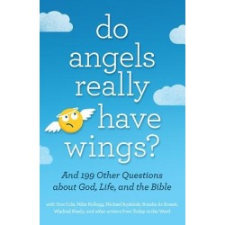 Do Angels Really Have Wings? - ... and 199 Other Questions about God, Life, and the Bible found on Bargain Bro Philippines from cokesbury.com US for $14.99