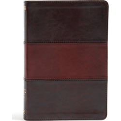 The No. 1 fully color-coded NIV Bible with more than 3 million combine - Saddle Brown Leathertouch Indexed found on Bargain Bro India from cokesbury.com US for $69.99