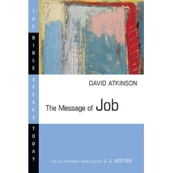 The Message of Job - Suffering and Grace found on Bargain Bro Philippines from cokesbury.com US for $18.00