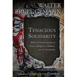 Tenacious Solidarity - Biblical Provocations on Race, Religion, Climate, and the Economy found on Bargain Bro India from cokesbury.com US for $29.00