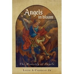 The book of Angels in Bloom, the ministry of angelic beings is an in-d found on Bargain Bro India from cokesbury.com US for $14.99