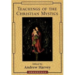 Teachings of the Christian Mystics found on Bargain Bro India from cokesbury.com US for $18.95