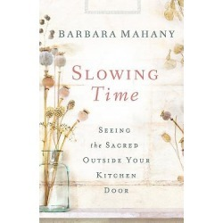 Slowing Time found on Bargain Bro India from cokesbury.com US for $16.99