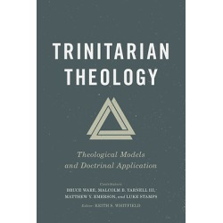 The heart of Christianity is trinitarian. The subject matter of Trinit - Theological Models and Doctrinal Application found on Bargain Bro India from cokesbury.com US for $19.99