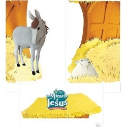 Miracle of Jesus Giant Photo-Op Posters (pkg. of 3)