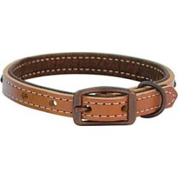 "Weaver Outlaw 5/8"" Dog Collar found on Bargain Bro Philippines from equestrian collections for $14.03"