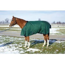HUG Abrazo Friesian Midweight Turnout Blanket found on Bargain Bro India from equestrian collections for $58.99