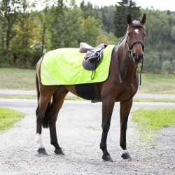 Horze Reflective Mesh Blanket found on Bargain Bro India from equestrian collections for $16.39