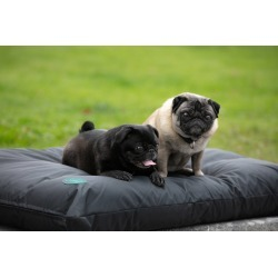 Amigo Dog Bed found on Bargain Bro India from equestrian collections for $31.99