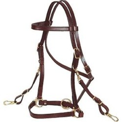 Circle Y Trail Halter/Headstall found on Bargain Bro India from equestrian collections for $123.29
