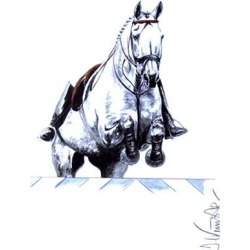 Monaco, Show Jumper Art Print by Jan Kunster found on Bargain Bro Philippines from equestrian collections for $45.89