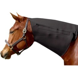 Neck Sweat found on Bargain Bro India from equestrian collections for $31.85