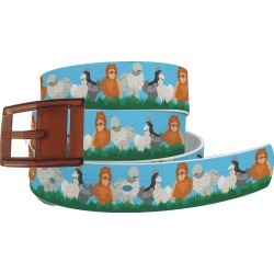 C4 Belt Silkie Chicken Belt with Khaki Buckle Combo found on Bargain Bro Philippines from equestrian collections for $34.99