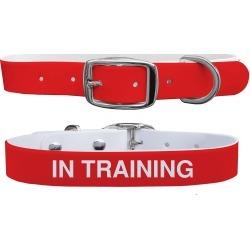 C4 Dog Collar In Training Collar