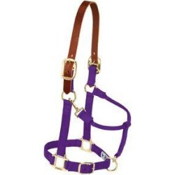 Weaver Breakaway Original Adjustable Chin and Throat Snap Halter found on Bargain Bro India from horseloverz.com for $29.55