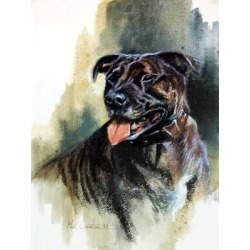 Staffordshire Bull Terrier By: Mick Cawston found on Bargain Bro India from horseloverz.com for $29.99