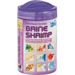 Brine Shrimp Fish Food