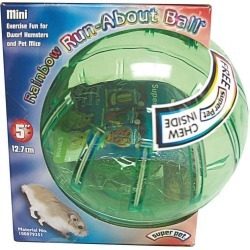 Rainbow Run About Ball For Small Animals