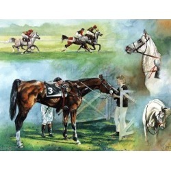 Arab Racing By: Jo Campin found on Bargain Bro Philippines from horseloverz.com for $46.99