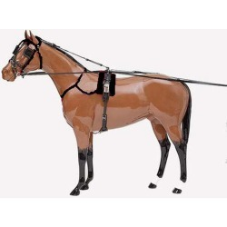 Finn Tack Zilco QH H503 Harness found on Bargain Bro India from horseloverz.com for $399.99