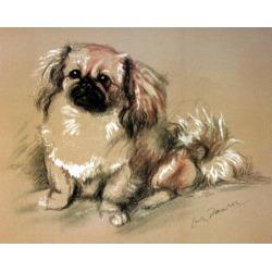 Porter Fine Art Dog Prints - Koko