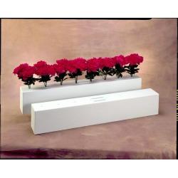 Flower Box   Small
