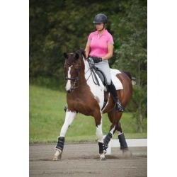 Moxie Guardian Dressage Boot- Front Boot found on Bargain Bro Philippines from horseloverz.com for $54.99