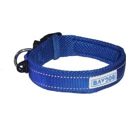 Baydog Tampa Bay Dog Collar found on Bargain Bro from horseloverz.com for USD $12.46