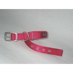 Hamilton Durable Double Thick Nylon Dog Collar found on Bargain Bro India from horseloverz.com for $7.39