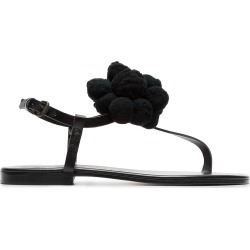 Álvaro black Arjan pom pom leather sandals found on MODAPINS from FARFETCH.COM Australia for USD $154.35