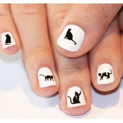 Cat Nail Art Transfers found on MODAPINS from Notonthehighstreet.com for USD $6.24