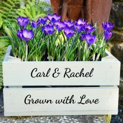 Personalised Small Crate With Crocus Bulbs