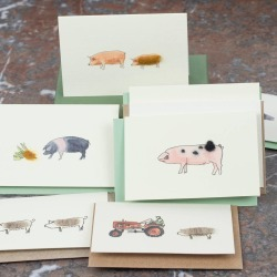 Boxed Collection Of Pig Gift Cards found on Bargain Bro UK from Notonthehighstreet.com for $21.88