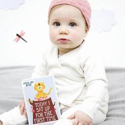 Milestone Baby Card Record Set Of 30