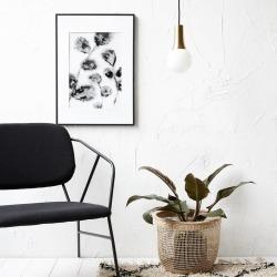 Floral Print In Frame