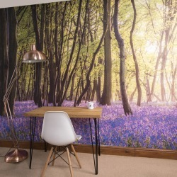 Bluebell Woods Self Adhesive Wallpaper Mural