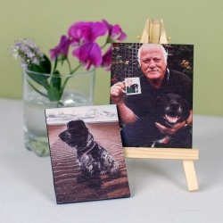 Pet Portrait Mini Canvas And Stand